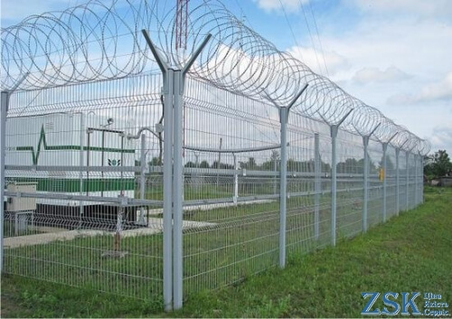 Egoza on the fence of the grid